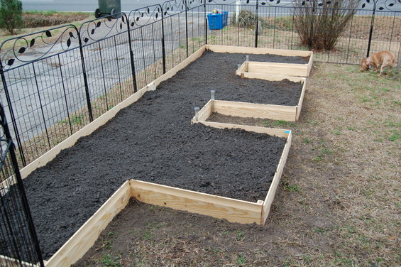 Feb 18th It Aint Pretty Yet But Gardening And Composting 2015 Gardening Blog Gdonna 39 S